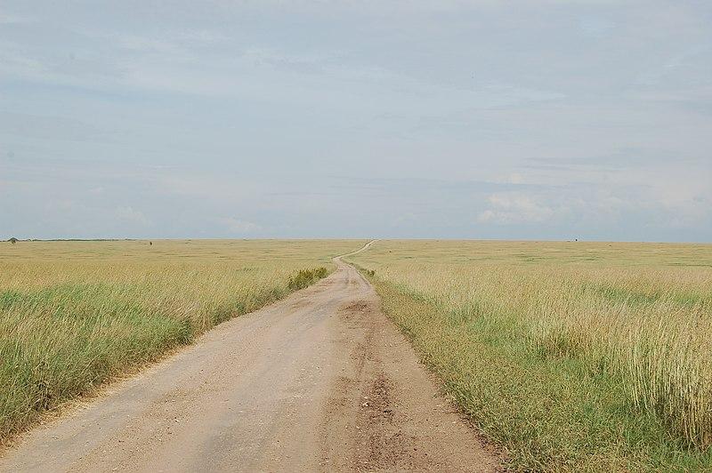 File:Serengeti, Tanzania (2337934474).jpg