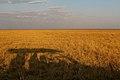 Shadows in Botswana big-sky country.jpg