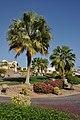 Sharm Garden R01.jpg
