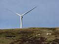 Sheep and turbine, Hart Hill - geograph.org.uk - 343803.jpg