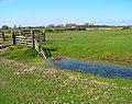 Sheepfold near Codhall - geograph.org.uk - 393910.jpg