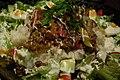 Sicilian rice saga.jpg