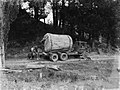 Side view of a Leyland truck transporting a piece of Kauri along a dirt road (AM 75778-1).jpg
