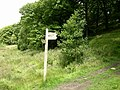 Signpost Redisher Valley - geograph.org.uk - 497220.jpg