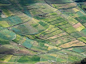Agriculture in Ethiopia - The hilly land has led to extensive terracing in some parts of the country.