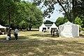 Site préhistorique d'Etiolles le 20 juin 2015 - 043.jpg