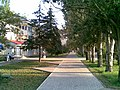 Skadovsk-21072010(008).jpg