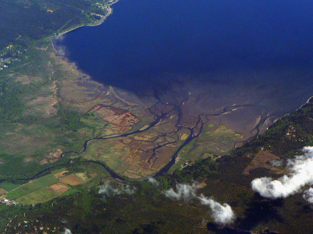 Skokomish River - Wikipedia