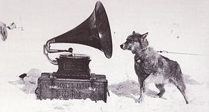 Addis v Gramophone Co Ltd - Image: Sled dog and gramophone Terra Nova Expedition