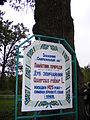 Slusarivskii vikovoi dub (2).JPG