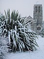 Snow in Exeter - geograph.org.uk - 1149506.jpg
