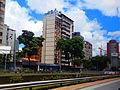 Sobre la Avenida Libertador, Caracas Venezuela.jpg