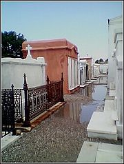 Saint Louis Cemetery #1 with newly renovated vaults