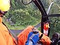 Starr-141014-2178-Caesalpinia decapetala-aerial view-Kakipi Gulch Haiku-Maui (25247184395).jpg