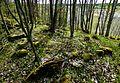 Stensättning Rasbo 144-1 Uppland.jpg