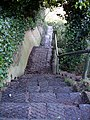 Steps to Water Meadows - geograph.org.uk - 1073341.jpg
