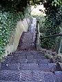 Steps to Water Meadows - geograph.org.uk - 1073341.jpg