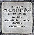 Stolperstein für Miklosne Kaufmann (Miskolc).jpg