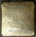 Stumbling block for Dr.  Siegmund Stein (Jahnstrasse 26)