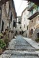 Strada di Casperia-1-.jpg