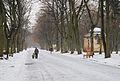 Stryisky park Lviv-20.JPG