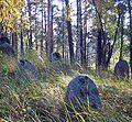 Subate cemetery.jpg