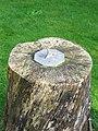 Sundial, St Osmonds Church - geograph.org.uk - 1568601.jpg