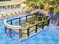 Swimming pool in Employee Care Centre, Infosys Mysore (21).JPG