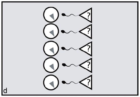 File:Synchronyd.tiff