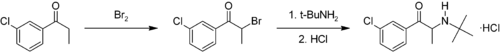 Synthesis of bupropion.png