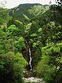 Tappara Gorge Fudo Falls 2.jpg
