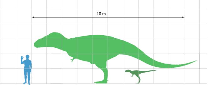 Tarbosaurusscale