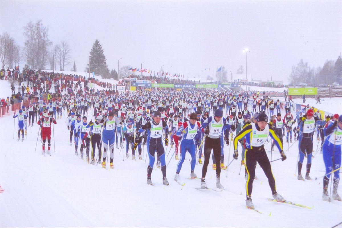 Лыжные гонки Википедия
