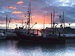 Tauranga, New Zealand (6870869678).jpg