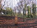 Ten Acre Pits, Huyton (5).JPG