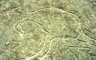 Terrey Hills, New South Wales - Aboriginal rock carving, Larool Road