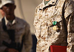 Texas Marine recognized for valor in Afghanistan 130723-M-ZB219-010.jpg