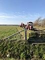 Texel-Hemmerweg-tuunwaltjes-2020-001.jpg