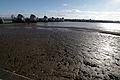 Thames barrier and thames mudflat 02.02.2012 15-41-48.JPG