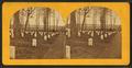 The Arlington national, cemetery, at Arlington, Va, by Bell & Bro. (Washington, D.C.).png