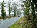 The Ridgeway 2 - geograph.org.uk - 1700786.jpg