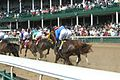 The earth shakes as the thoroughbreds thunder by. (7152473925).jpg