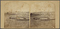 The pool, Danvers, from Robert N. Dennis collection of stereoscopic views.jpg