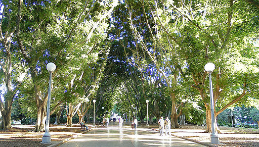 The worlds best Hyde park Sydney
