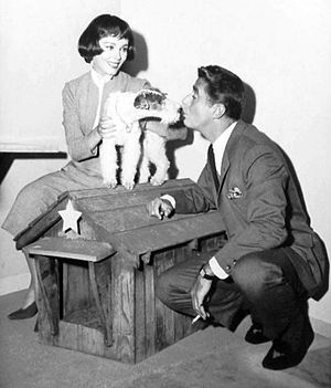 Phyllis Kirk - Kirk as Nora Charles with Peter Lawford in The Thin Man (TV series) (1957)