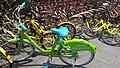 Tianjin.Mobike Ofo Kuqi.jpg