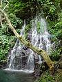 Tinago Falls Iligan City 03.JPG