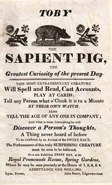 List of pigs - Wikipedia