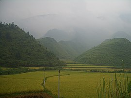 Tongshan-County-rice-fields-9881.jpg