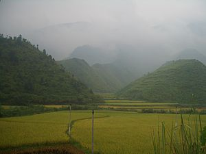 Mufu Mountains - Rice fields in a valley in the Mufu Range, seen from National Highway 106 east of Tongshan